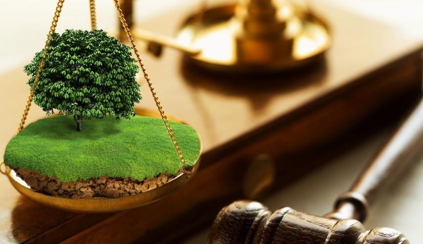 истребование земли из незаконного владения